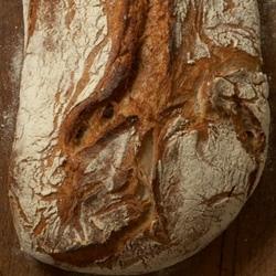 polaroid_1341477277-maison-landemaine-boulangerie-03