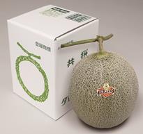 melon21