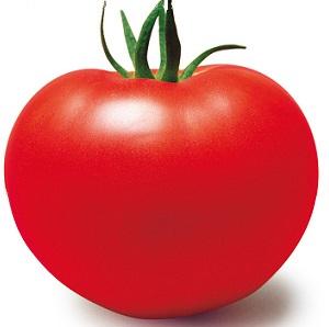 Tomatp